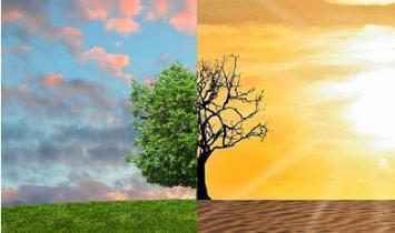 O 'Consenso' sobre Mudança Climática Irrelevante