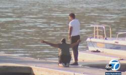 Mãe de atriz de Glee se ajoelha e chora em lago onde filha sumiu