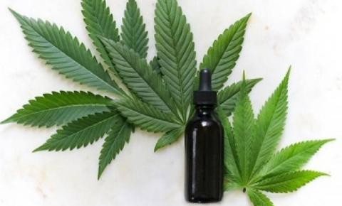 Desembargador revoga decisão e mantém em funcionamento a ABRACE- Associação Brasileira de Apoio Cannabis Esperança