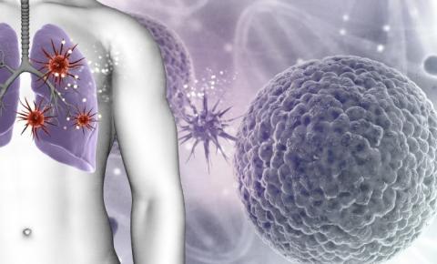A física alemã Viola Priesemann alerta sobre novas variantes do coronavírus que podem tornar as vacinações obsoletas ou reduzir sua eficácia.