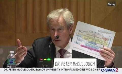 A HIDROXICLOROQUINA é vítima de uma fraude acadêmica, afirma Dr. McOullough no Senado americano
