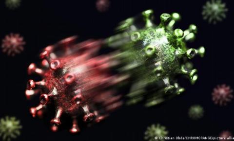 Estudo de cientistas da Universidade do Chile indica que a vacina de Sinovac produz uma variante mais transmissível e potente chamada Lambda